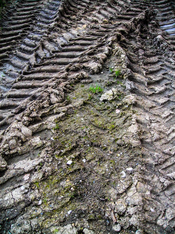 Tractor Tracks In The Mud