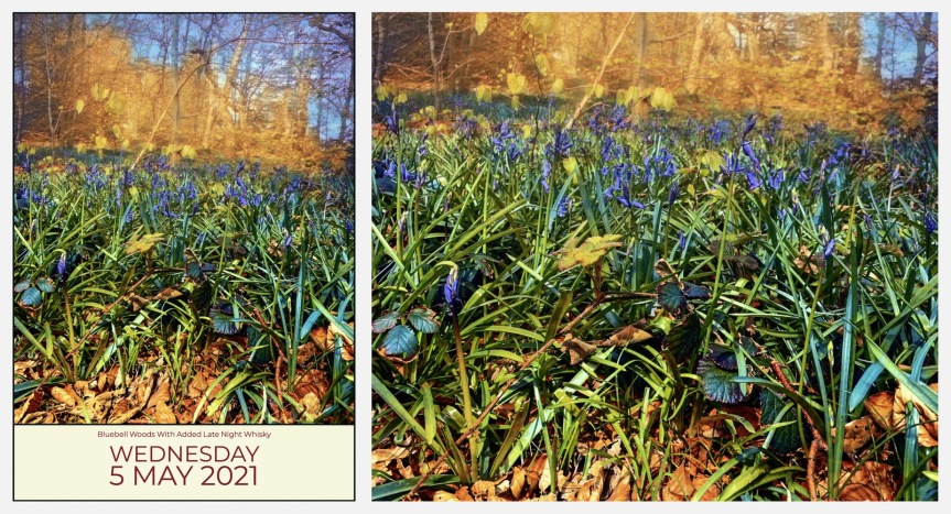 Bluebells And Whisky