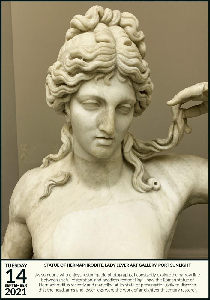 Hermaphroditus Restored